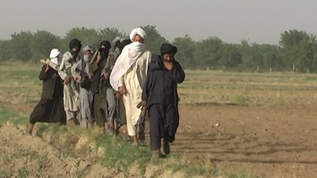 چارواکي وایي چې افغان طالبان له مالي بحران سره مخامخ شوي دي