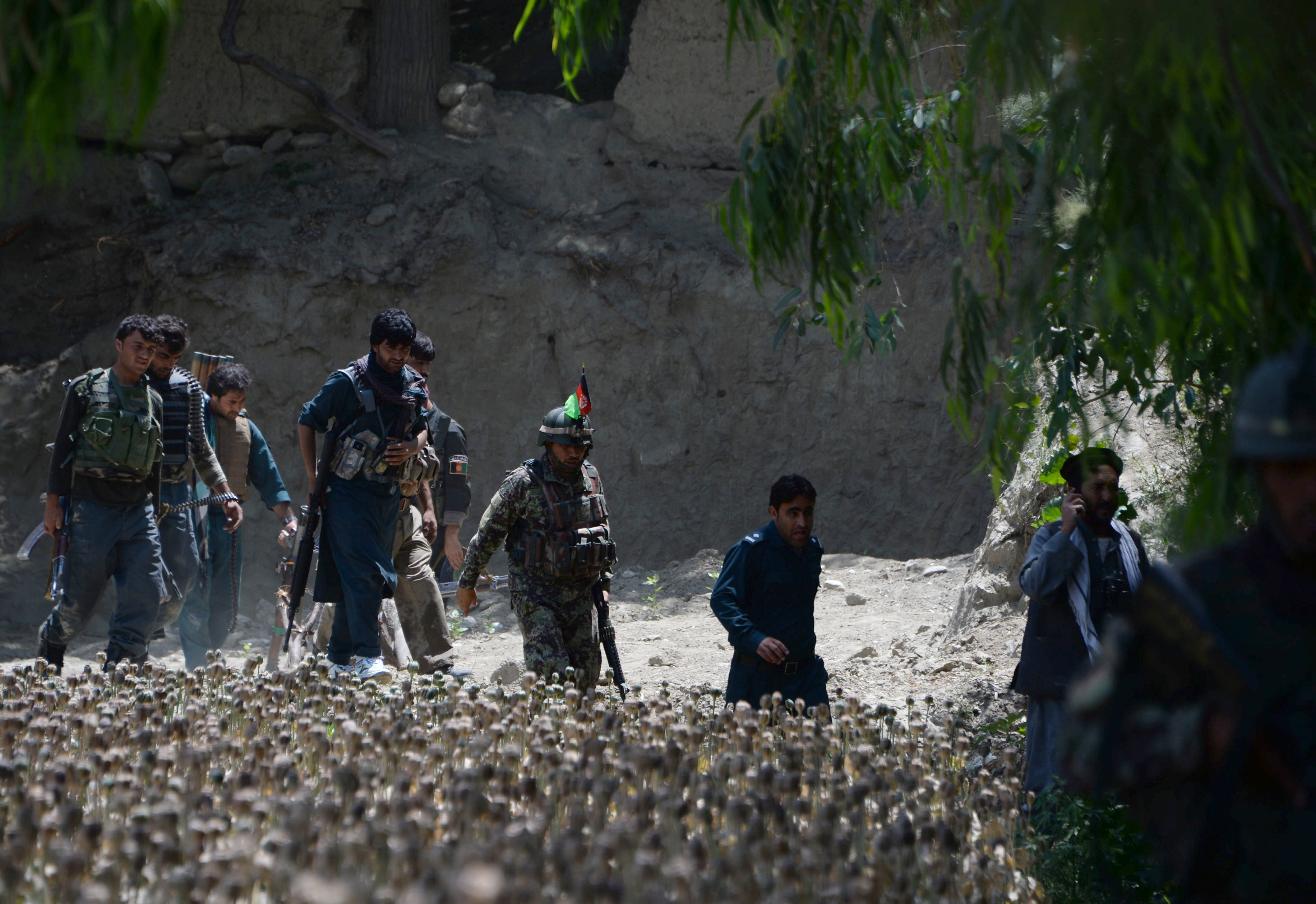 Losses mount for ISIS in Afghanistan