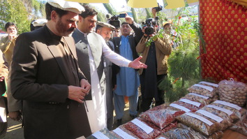 Kunar eyes local medicinal herbs as way to improve economy, health