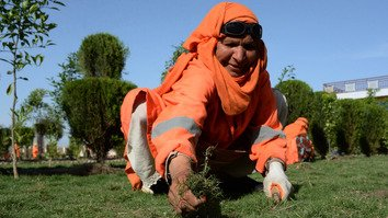 An Afghan municipality employee, supported by UN-Habitat, weeds a garden in Jalalabad April 23. [Noorullah Shirzada/AFP]