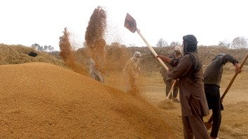 Taliban militants extort ushr from Kunduz farmers