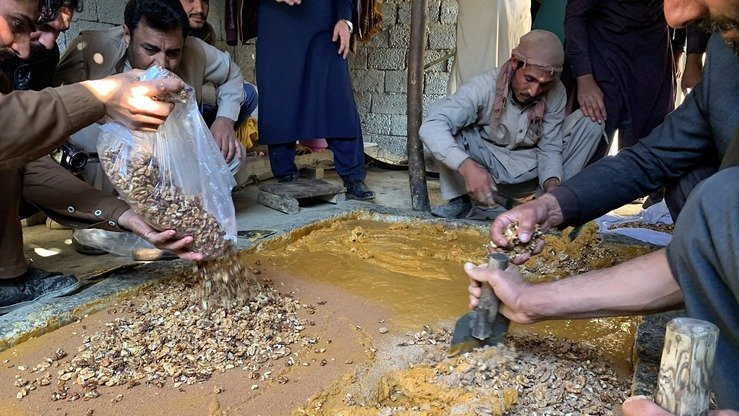 Workers add walnuts to half-baked sugar cane juice before making gora in Kama District, Nangarhar Province, December 26. [Khalid Zerai]