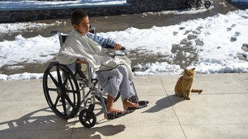 A wounded Afghan boy January 5 sits in a wheelchair next to a cat after receiving treatment at Emergency Hospital in Kabul. [Wakil Kohsar/AFP]