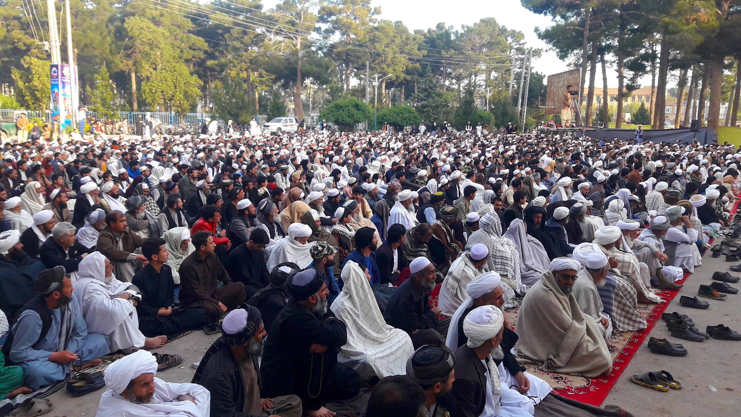'Thirsty for peace': thousands of Herat residents call on Taliban to end war