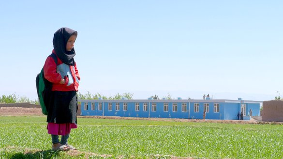 Taliban threats, violence force over 300,000 children out of school in Herat